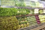 유해물질 잔류조사 대상에 '생산단계' 농산물 추가