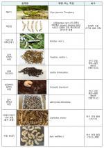 식품원료로 사용 가능한 식용곤충
